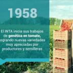 Embedded thumbnail for Genética del tomate