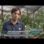 Embedded thumbnail for Techos verdes Sistema sustentable en Pampero TV