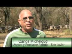 Embedded thumbnail for Entrevista a Carlos Micheloud