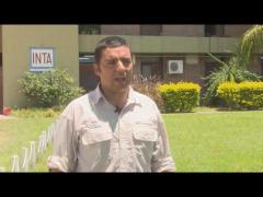 Embedded thumbnail for Entrevista Ing. Agr. José Chiossone