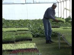 """Embedded thumbnail for Programa """"Nuestro Campo"""" N° 39 del 01/06/2014"""