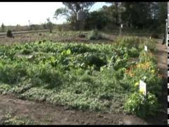"""Embedded thumbnail for Programa """"Nuestro Campo"""" Nº 42 del 22/06/2014"""