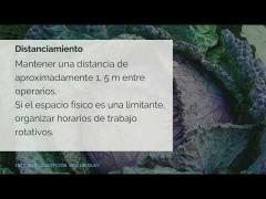 Embedded thumbnail for Horticultura y COVID-19: pautas preventivas - Video