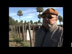 """Embedded thumbnail for Programa """"Nuestro Campo"""" N° 11/2013"""