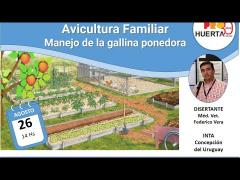 Embedded thumbnail for Avicultura familiar. Manejo de la gallina ponedora