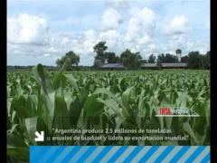 Embedded thumbnail for Biocombustibles: Sustentabilidad e impacto ambiental