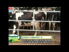 "Embedded thumbnail for Programa ""Nuestro Campo"" N° 4 del 28/04/2013"