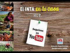 Embedded thumbnail for Seguí nuestras capacitaciones en Youtube