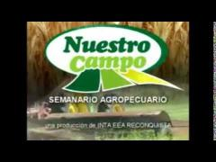 """Embedded thumbnail for Programa """"Nuestro Campo"""" N° 15/2013"""